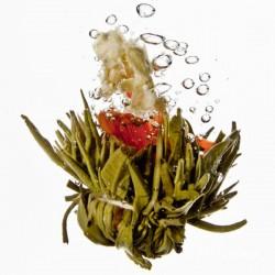 Blütenreigen - Bloomingtea - Teeblume aus China