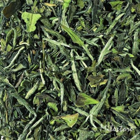 Pai Mu Tan - Weißer Tee