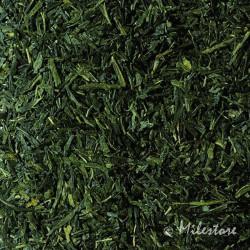 Japan Sencha Fukujyu - Grüner Tee