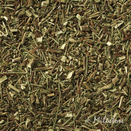 Grüner Rotbusch - Grüner Tee - Rooibos