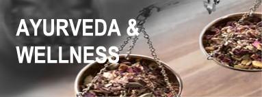 Kategorie Wellness Tee